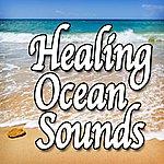 Natural Sounds Healing Ocean Sounds (Nature Sounds)