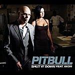 Pitbull Shut It Down (2-Track Single)