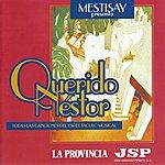 Mestisay Mestisay Presenta Querido Néstor