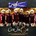 Palomo Con Tuba