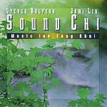 Steven Halpern Sound Chi: Music For Feng Shui
