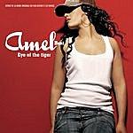Amel Bent Eye Of The Tiger (2-Track Single)