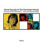 David Cassidy Could It Be Forever...the Greatest Hits