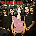 Redwood Of Butterflies & Hurricanes