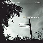 Solo Opportunities - Single