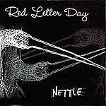 Red Letter Day Nettle