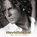 David Bisbal Mi Princesa (Single)