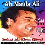Rahat Fateh Ali Khan Ali Maula Ali - Vol. 3