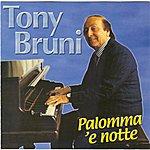Tony Bruni Palomma 'e Notte