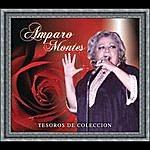 Amparo Montes Tesoros De Coleccion - Amparo Montes