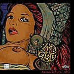 A.S.G. Volcom Ent. Vinyl Club #11