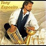 Tony Esposito Tamburo Oro