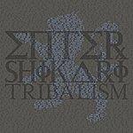 Enter Shikari Tribalism