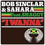 Bob Sinclar I Wanna (4-Track Maxi-Single)