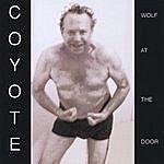 Coyote Wolf At The Door