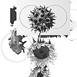 Grey Matter Too Much (Inc. Illum Sphere And Klic Remix)