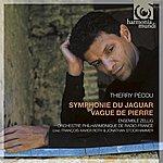 Orchestre Philharmonique De Radio France Pécou: Symphonie Du Jaguar; Vague De Pierre