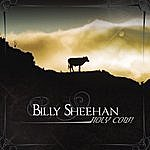 Billy Sheehan Holy Cow!