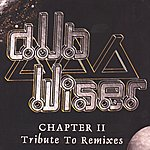 Dub Wiser Chapter ii - Tribute To Remixes