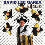 David Lee Garza Y Los Musicales Nadie Como Yo