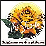 Shade Highways And Spiders