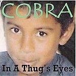 Cobra In A Thug's Eyes