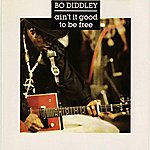 Bo Diddley Ain't It Good To Be Free