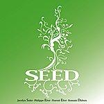 Seed Seed