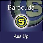 Baracuda Ass Up