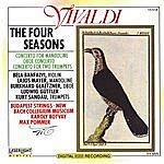 Max Pommer Vivaldi - Four Seasons