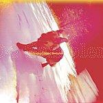 Cover Art: Polyvinyl 2004 Sampler