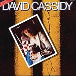 David Cassidy Gettin' It In The Street