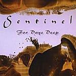 Sentinel For Days Deep