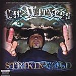 Lil Witness Striking Cold