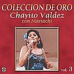 Chayito Valdez Caballo Prieto Azabache