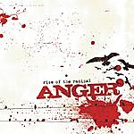 Anger Rise Of The Radical