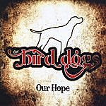 The Bird Dogs Our Hope