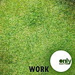 Work Worked (2-Track Single)