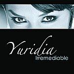 Yuridia Irremediable (Single)