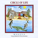 Magpie Circle Of Life