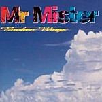 Mr. Mister Broken Wings