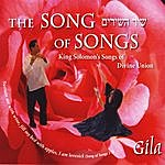 Gila The Song Of Songs