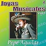Pepe Aguilar Recuerdame Bonito (Alternate Version)
