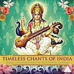 Vicki Hansen Timeless Chants Of India