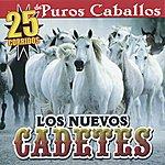 Los Nuevos Cadetes 25 Corridos De Puros Caballos