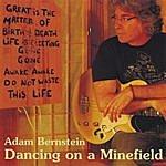 Adam Bernstein Dancing On A Minefield