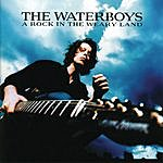 The Waterboys A Rock In The Weary Land
