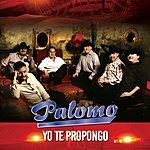 Palomo Yo Te Propongo