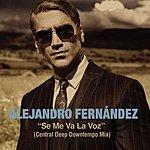 Alejandro Fernandez Se Me Va La Voz (Central Deep Downtempo Mix)