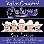 Palomo Ya Los Conoces
